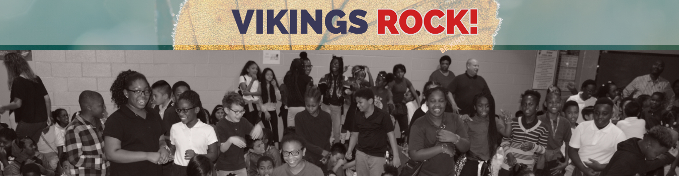Vikings Rock